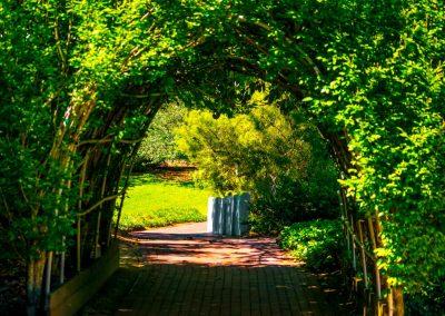 Hopelands Gardens-0602