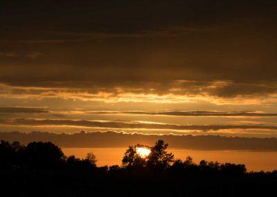 Sunsets-0315