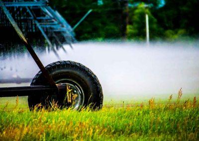 irrigator-0251
